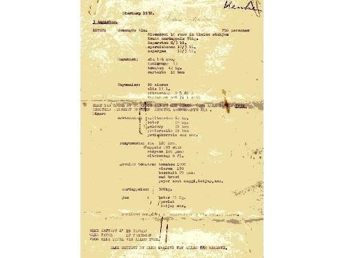 HerschaaldekopievanThelma007-fcba9d4a61